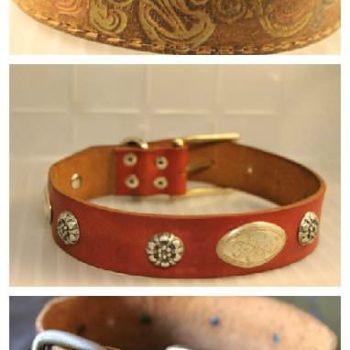 Saving Belts, One Dog Collar at a Time