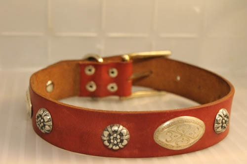 Saving Belts, One Dog Collar at a Time Accessories