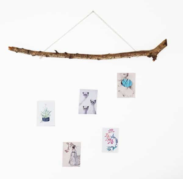 Branch Gallery Do-It-Yourself Ideas