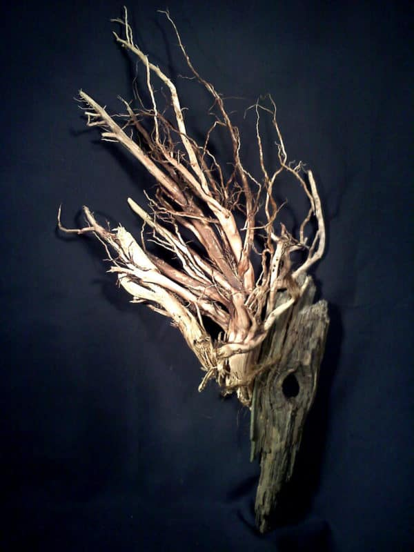 Nesting Ravenwood Wood Sculpture Wood & Organic