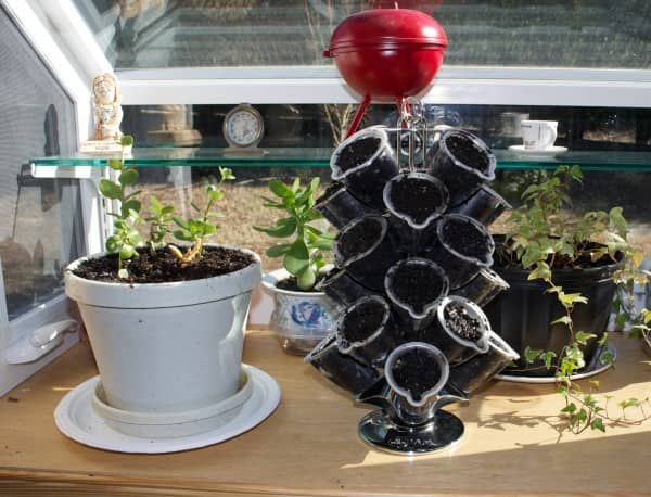 Herb Garden from Reused Coffee Pods Garden Ideas