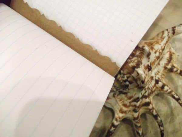 Renotes #10: Paper Waste Into Notebooks Recycling Paper & Books