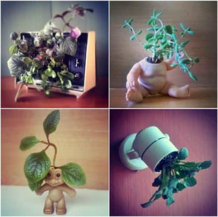 Upcycled Planters From Unusual Objects