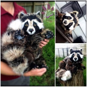 Recycled Clothing Raccoon Noni