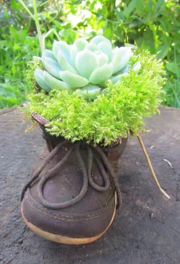 Shoes, Chairs & Tool Boxes: Everything Could Be Reused into Planters / Idée De Bac à Fleurs Pour Le Jardin Garden Ideas