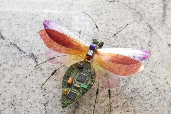 Computer Bugs Recycled Electronic Waste