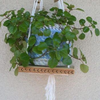 Decorative Macrame Plant Holder / Portamaceta Colgante
