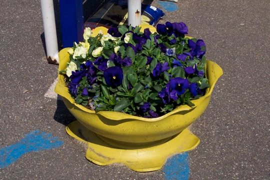 Tyre Planter Recycled Rubber