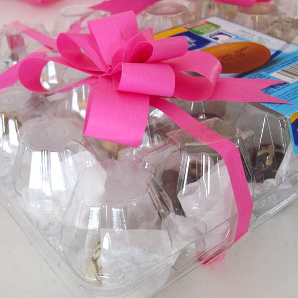 Reused Plastic Egg Container for Chocolates Do-It-Yourself Ideas Recycled Plastic