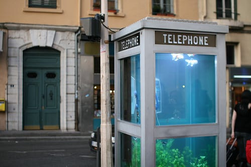 aquarium_phone_booth01