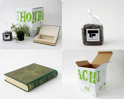 Used Book Turned Into Flowerpot Recycling Paper & Books