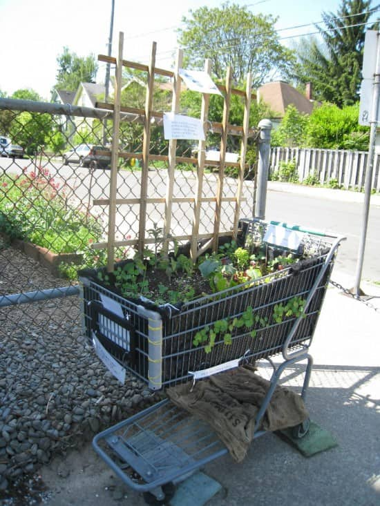 From Old Shopping Cart To Gardening Planter Garden Ideas Recycling Metal