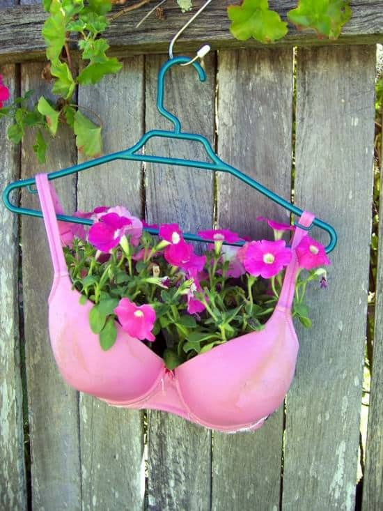 Plant A Bra Clothing Garden Ideas