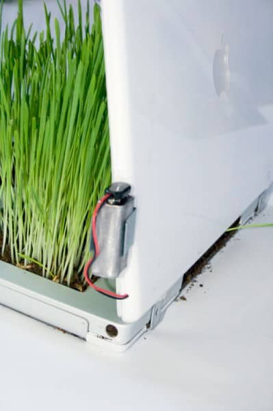 Iplanter Recycled Electronic Waste