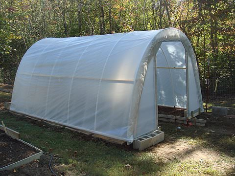 50$ Garden Greenhouse Do-It-Yourself Ideas Garden Ideas