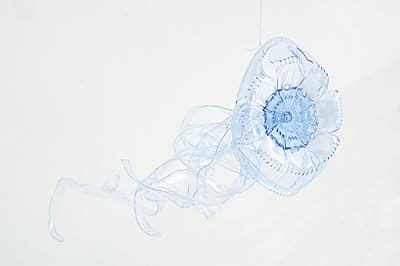 Pet Jelly Fish Recycled Packaging Recycled Plastic