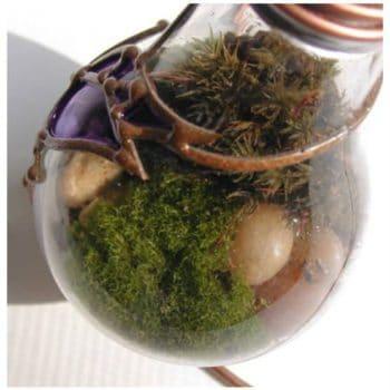Terrarium Made From Discarded Light Bulb