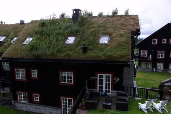 green-roof-norway (11)