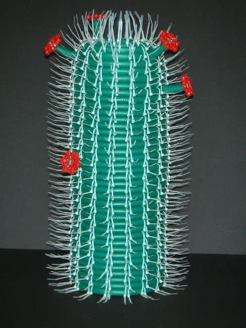 Hose Cactus Recycled Art