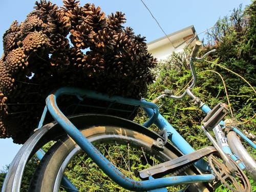 Pine Cone Bike Basket Upcycled Bicycle Parts Wood & Organic
