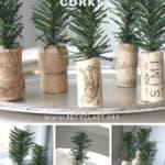 Diy: Tiny Trees From Upcycled Corks