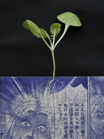 Manga Farming Recycled Art Recycling Paper & Books