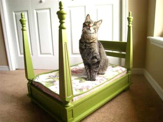 Deluxe Cat Bed Do-It-Yourself Ideas Recycled Furniture