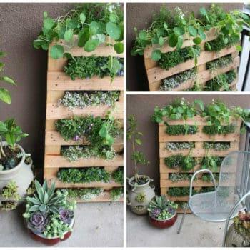 DIY: Tiny Balcony Pallet Planter