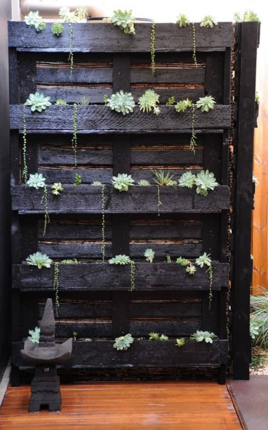 Paletto-cactus Do-It-Yourself Ideas Recycled Pallets Wood & Organic