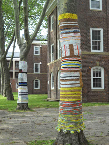 Knit For Trees ! Interactive, Happening & Street Art Recycled Art Recycled Plastic