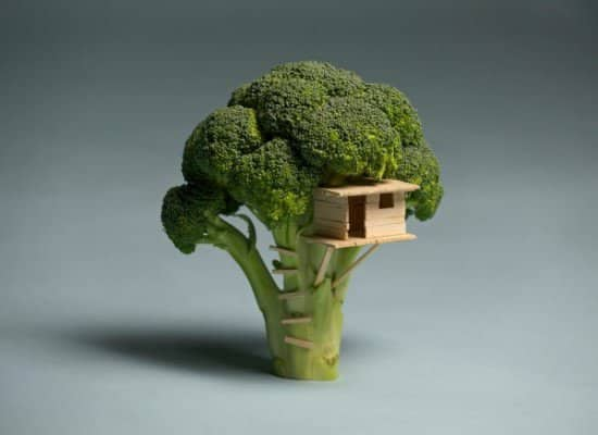 Broccoli Tree House Do-It-Yourself Ideas Wood & Organic