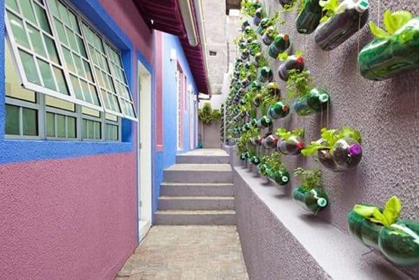 Plastic Bottles Garden