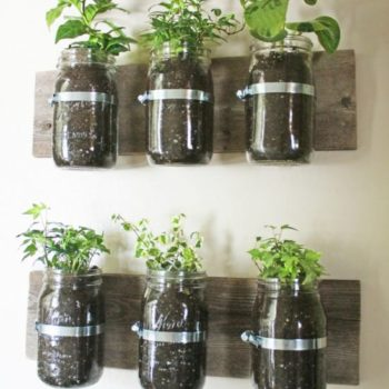 Jar wall planter