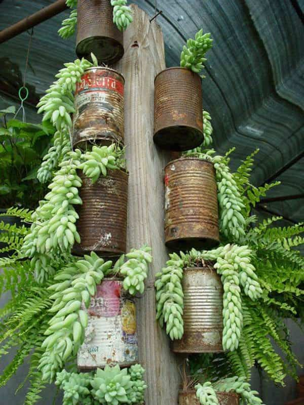 Cheap Planters From Recycled Tin Cans Recycling Metal