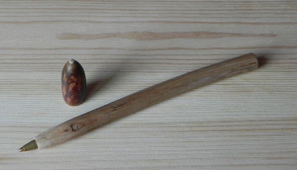 penna_in_legno_di_kiwi_e_ghianda_1