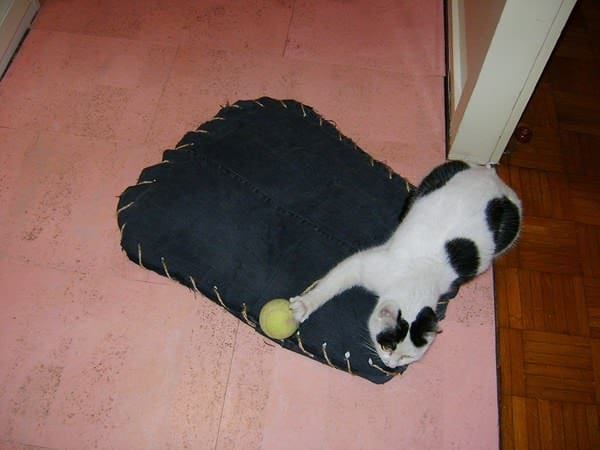Fun and Sleeping Place for Your Pet Do-It-Yourself Ideas