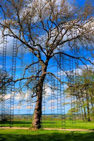 L'arbre Aux Echelles / Ladders Tree Garden Ideas Recycled Art