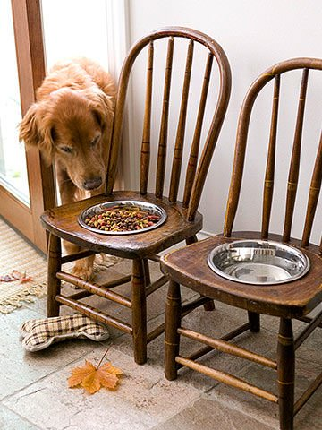 Old Chairs Into Dog Feeding Station Do-It-Yourself Ideas Recycled Furniture