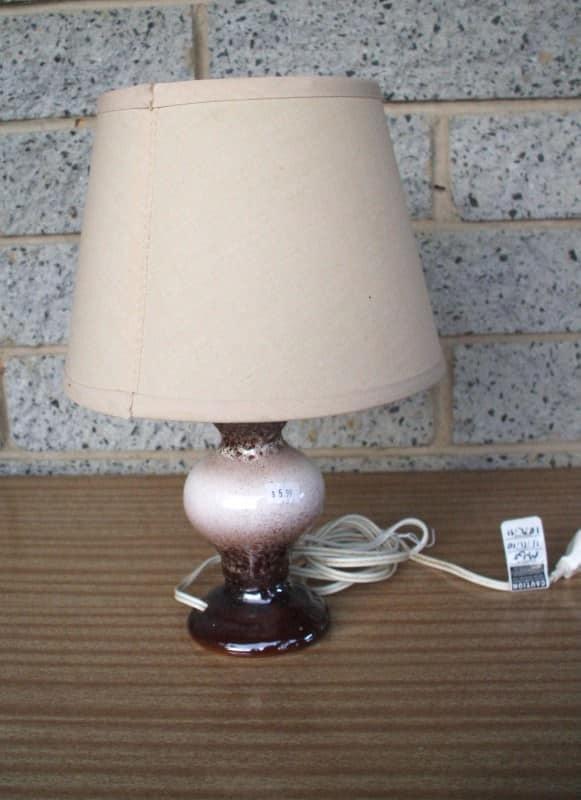 Emily Illuminates The World Lampshade