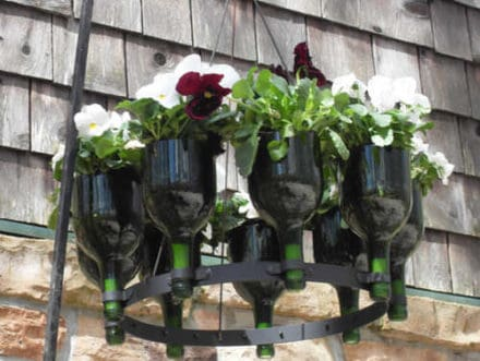 Another Planter From Discarded Wine Bottles
