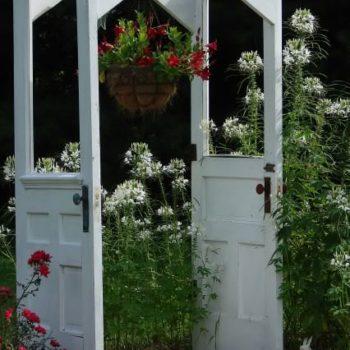 Old doors --> arbor