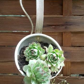 Upcycled Ladle Into Planter