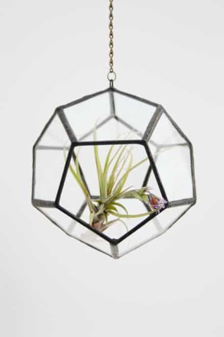 Recycled Glass Terrarium