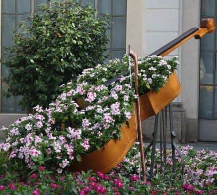 Cello Planter