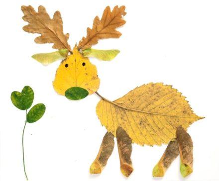 Diy : Fall Leaves Craft Ideas