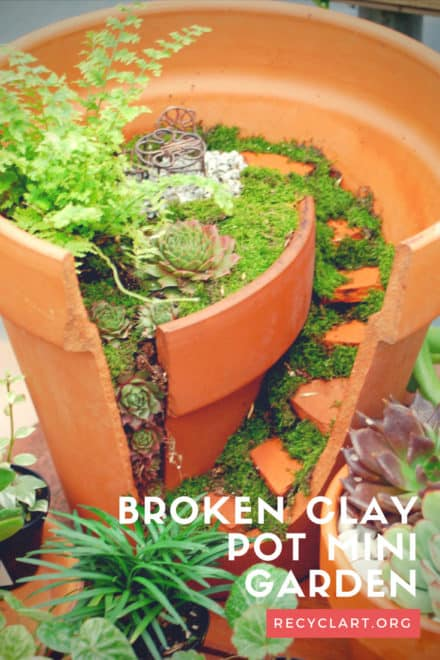 Broken Clay Pot Into Mini Garden