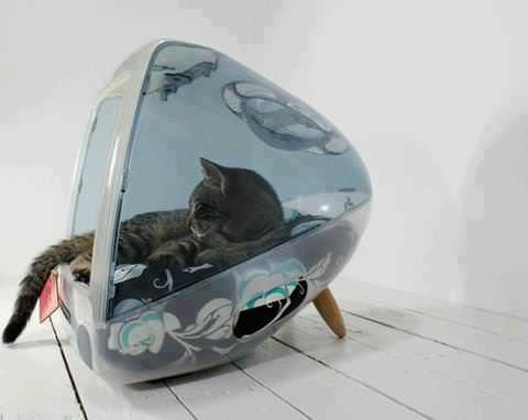 Icat : Cat House from an Old Mac Do-It-Yourself Ideas Recycled Electronic Waste Recycled Plastic