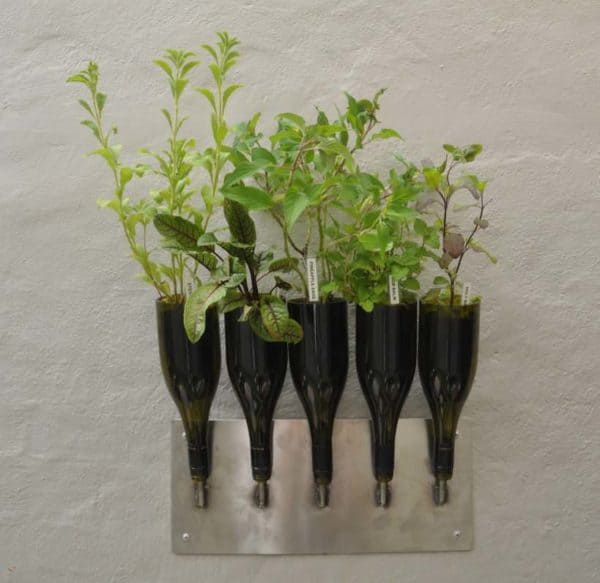 Herbs Planter from Wine Bottle Garden Ideas