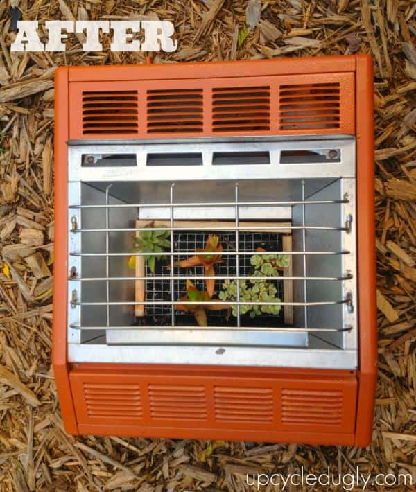 Diy: Ugly Wall Heater Upcycled Into Succulent Planter Do-It-Yourself Ideas Garden Ideas