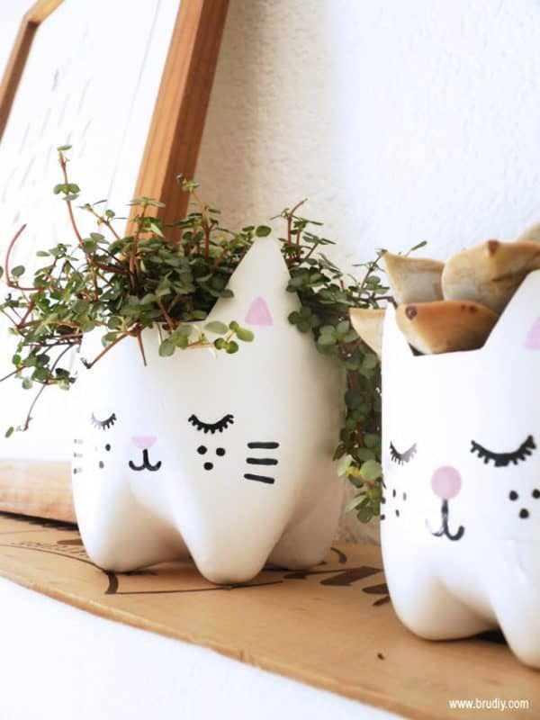 Diy: Kitty Planters from Plastic Bottles Do-It-Yourself Ideas Recycled Plastic
